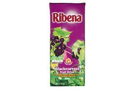 RIBENA TETRA BLACKCURRANT 250ml (24)